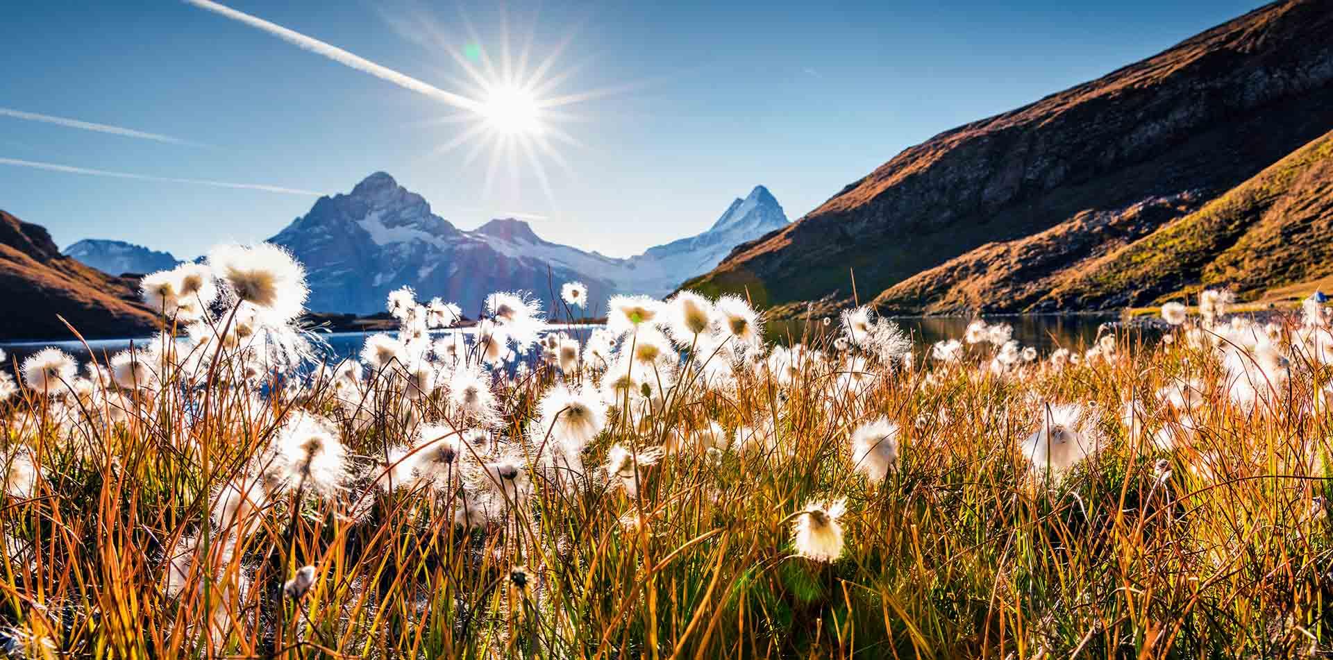 Sunny morning scene Bachalp Lake, Swiss Alps