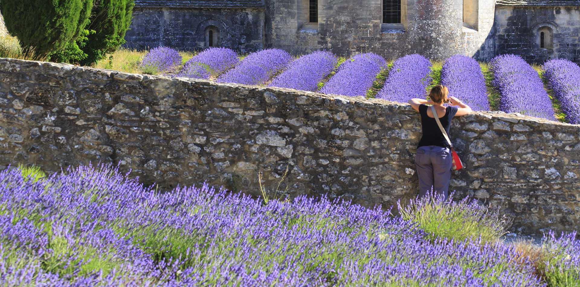 Women at Senanque Abbey, Provence