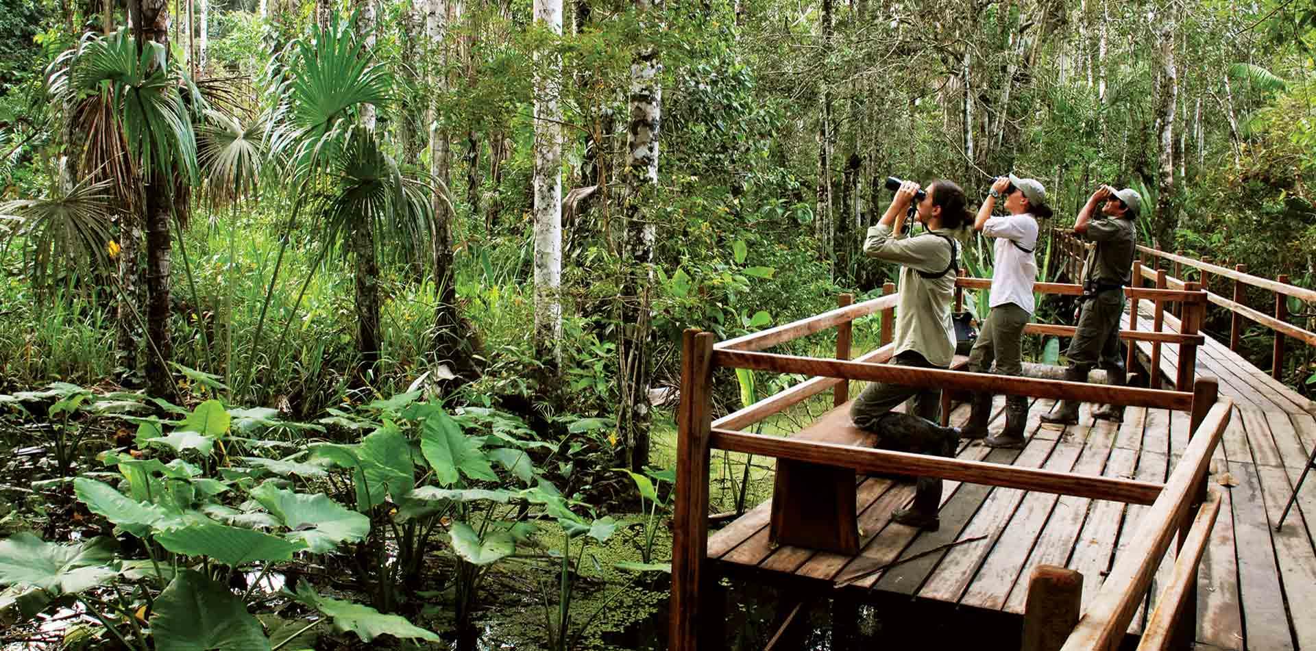 Inkaterra Reserva Amazonica Hotel, Peru