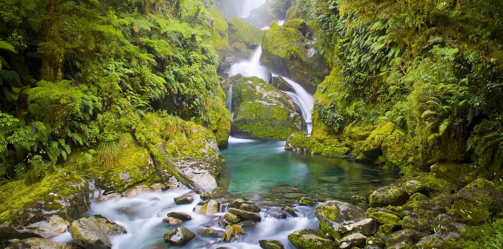 Mackay Falls, Milford Track, New Zealand