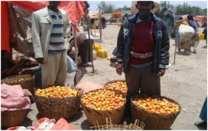 Ato selling his tomatoes at the market