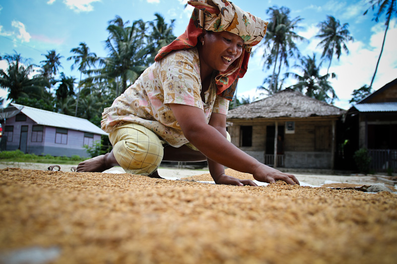 Woman working on a blanket with harvested rice