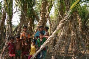 Children gathered around sugarcane field