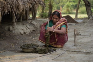 Nondita Rani Howlader covers a large stick in cow dung. This will serve as an alternative to firewood.