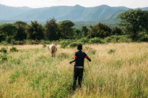 Galgalo in Kenya
