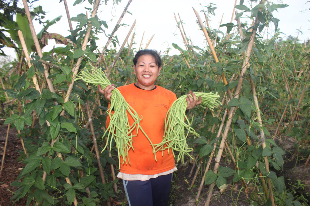 Martha no longer has to buy vegetables for her family thanks to the abundant supply of her garden.
