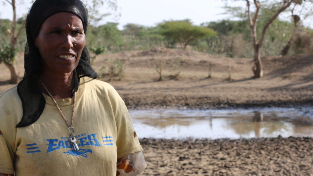 Sendabie Hamda earns her income through farming and cattle raising, both of which are incredibly difficult during this El Niño drought.