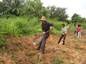 Church members in Anlong Veng build a road together.