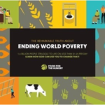 Ending Poverty eBook