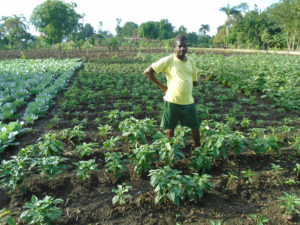 Odins Robert was able to receive agricultural training and vegetable seeds from FH. Now, he is able to provide for all of his family's needs despite his physical disability.