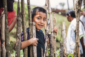 Guatemala boy in Food for the Hungry (FH) program peers through some branches.