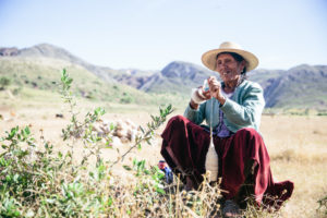 A Woman in Bolivia Works with Wool