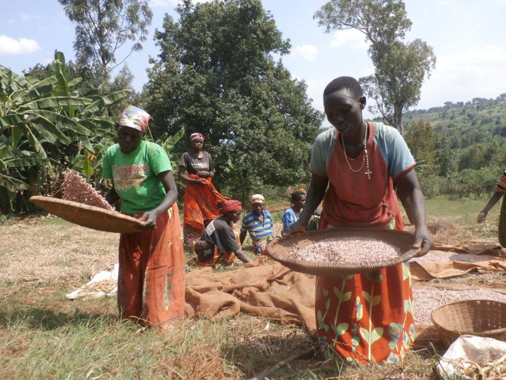 International Womens Day Photoessay - Burundi women sieving sifting beans in the sunlight