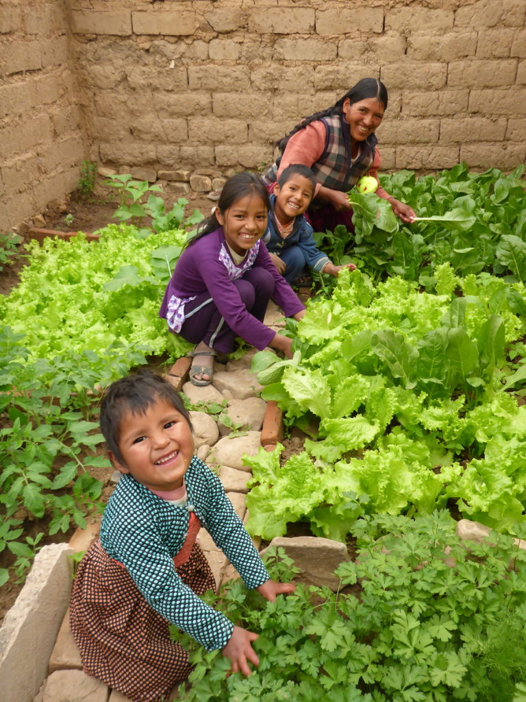 International Womens Day Photoessay - Mom and three children in Bolivia working in their greenhouse smiling by their lush agricultural produce like cabbage and lettuce