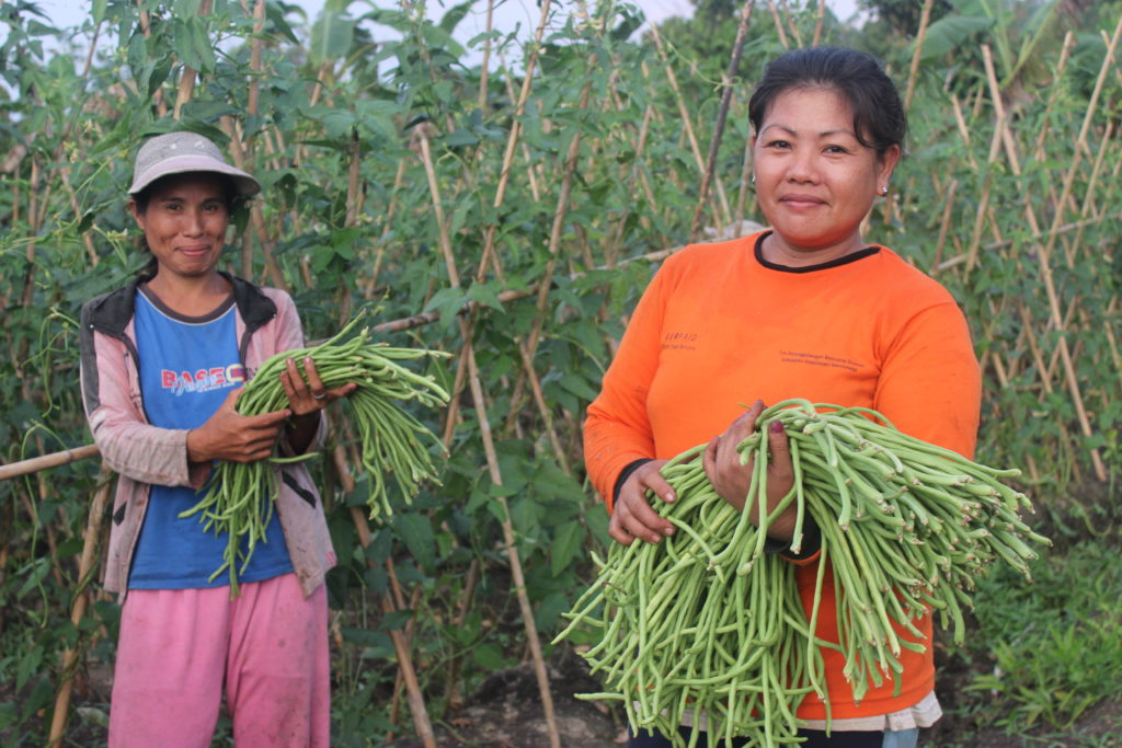 International Womens Day Photoessay - Two women in Philippines stand with their vegetables in the field