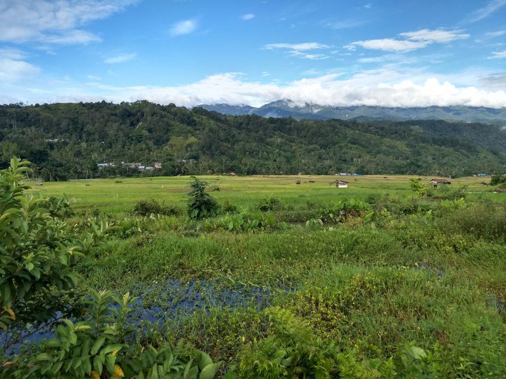 Indonesian landscape