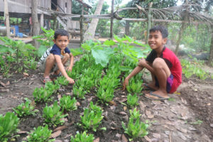 Two Cambodian boys squat, smiling, next to their small home garden, which is sprouting green vegetables.