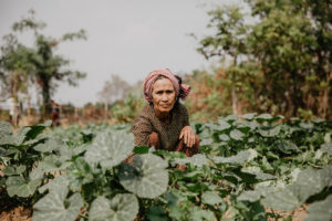 A Cambodian woman in red headscarf in a green field