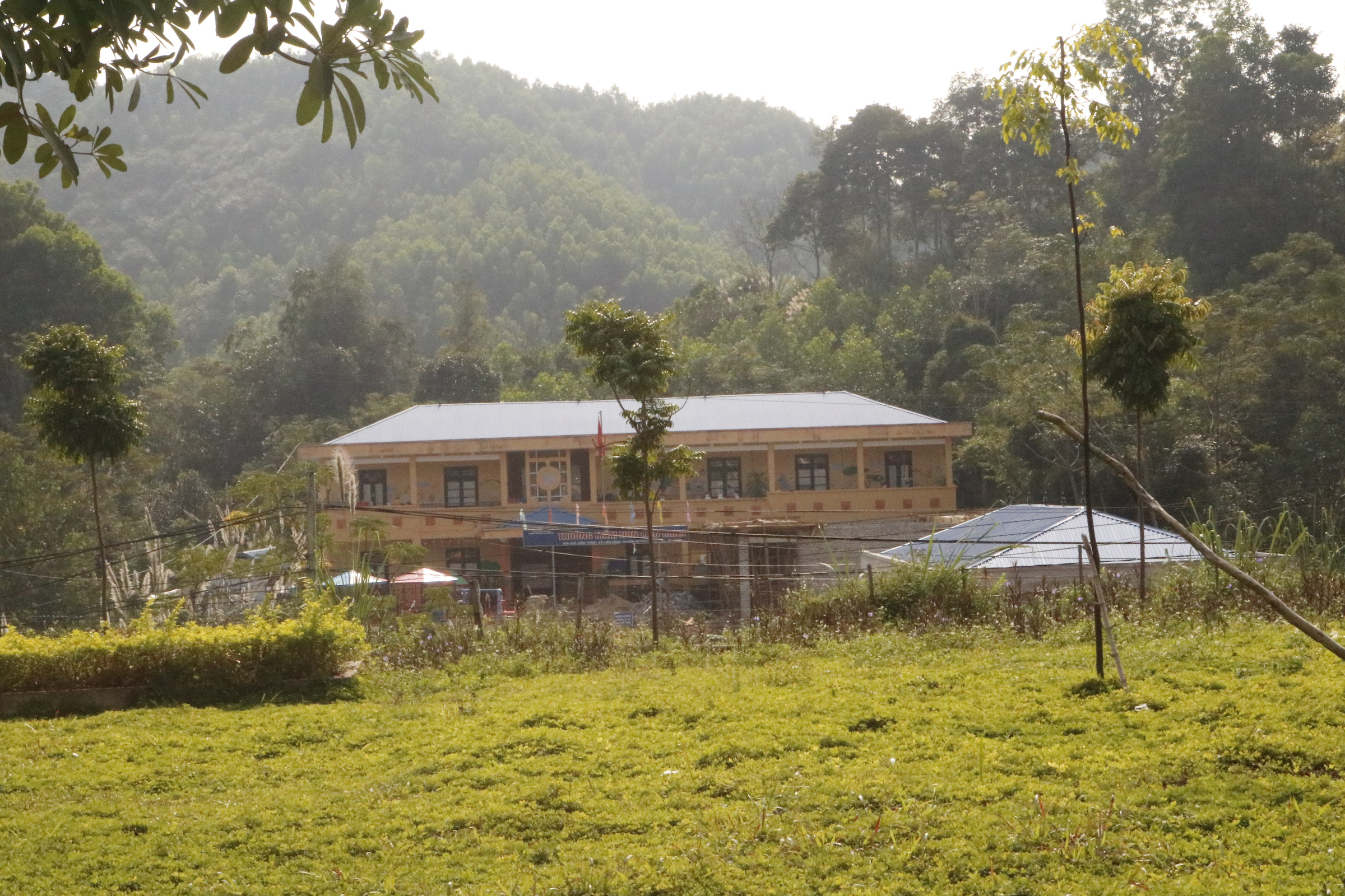 Building in Lien Minh, Vietnam in the distance with green grass in the foreground and lush forest in the background
