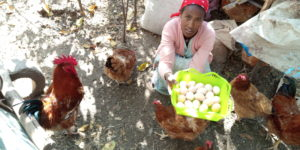 Ethiopian woman showing eggs and chickens