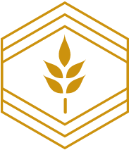 President's Circle icon