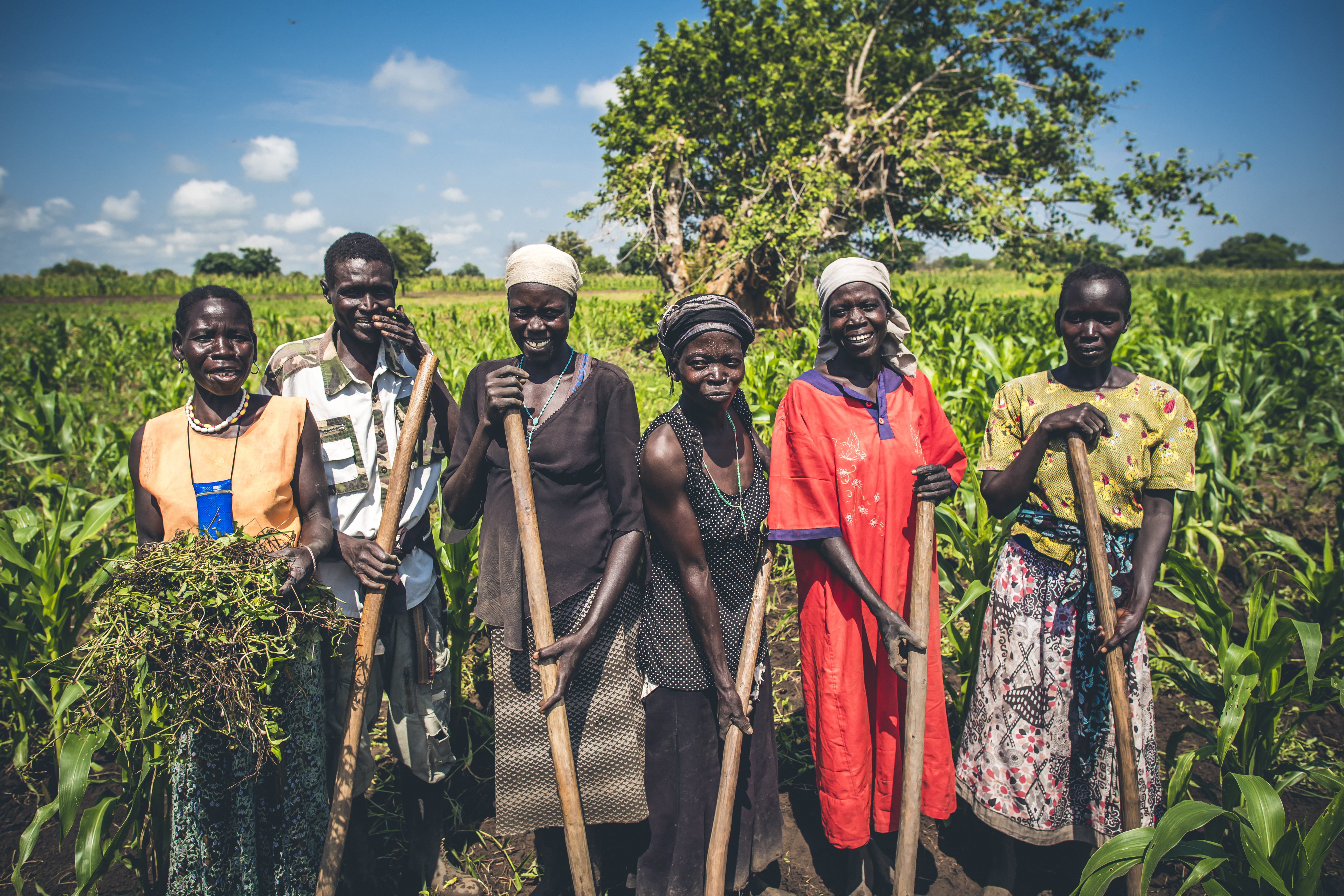 A group of South Sudan refugees work on a plot of land in Uganda.