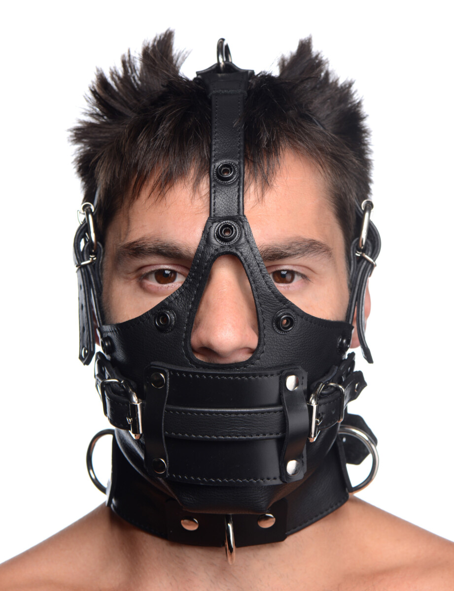 Leather Head Harness with Removeable Gag - 3HBkQjub 91133d5f scaled