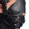 Leather Head Harness with Removeable Gag - L7RLABfa 26dceb8a scaled