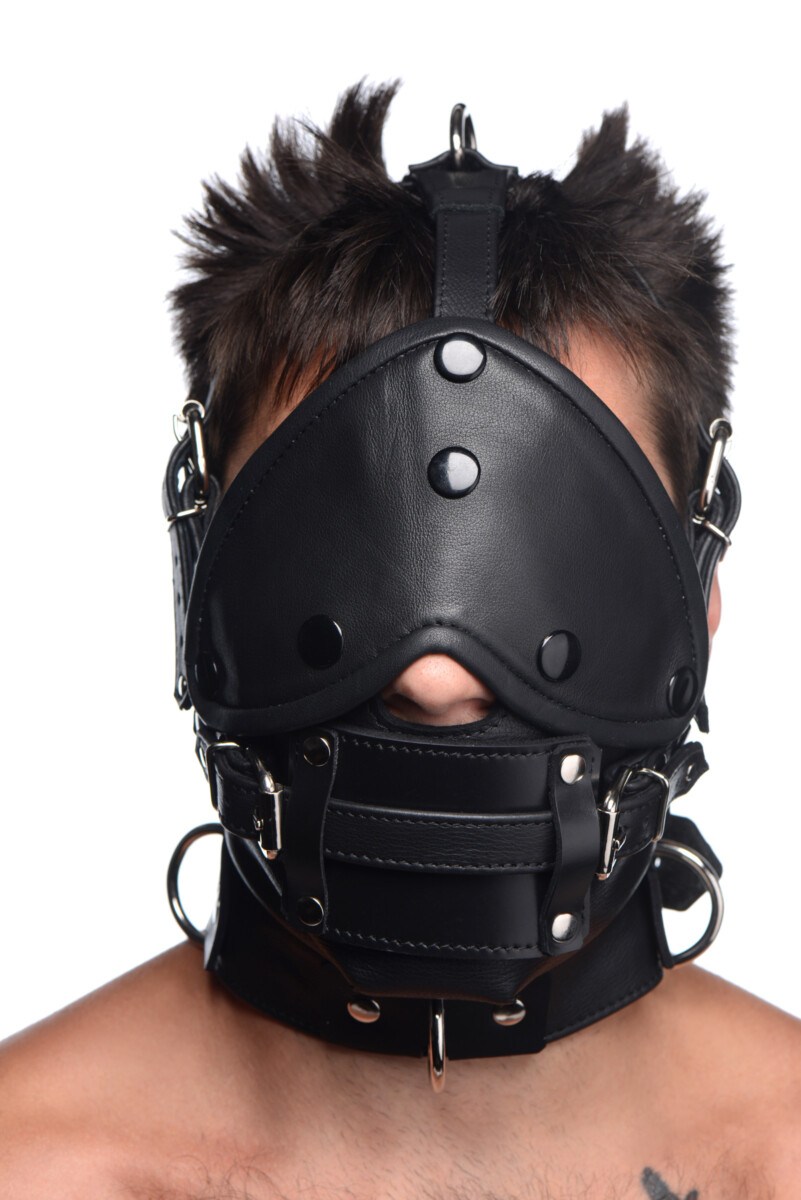 Leather Head Harness with Removeable Gag - SZ3p9wbK 56c17d63 scaled
