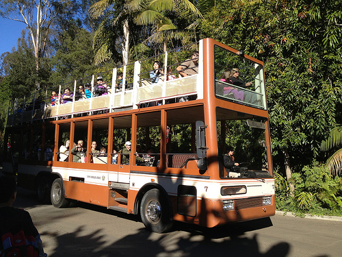 Double Decker Tour Bus, San Diego Zoo