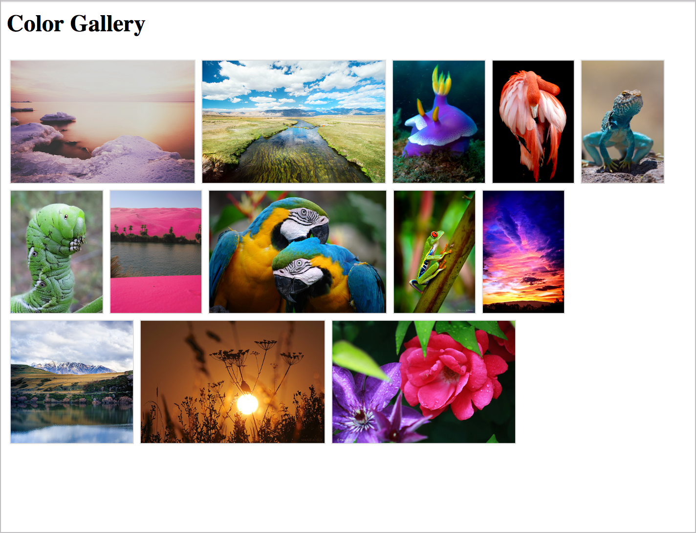 Color Gallery integrated through the Flickr API