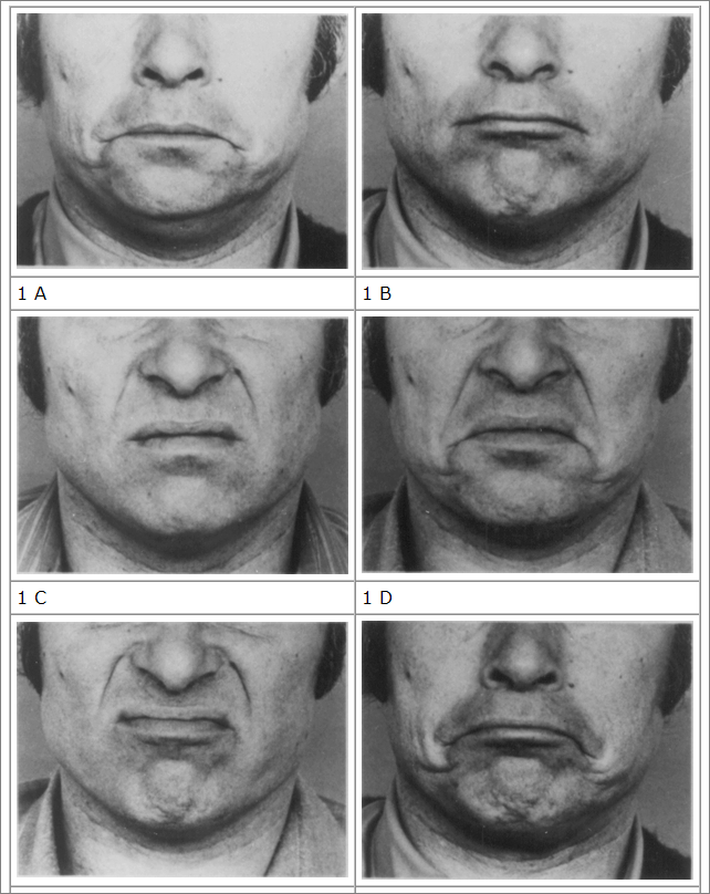 facial movements from Ekman and Friesen's FACS publication