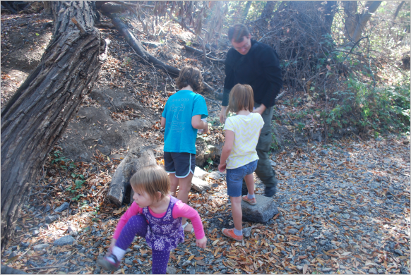 Turn over rocks to see what you find. Then be ready to quickly put something in your bug house.