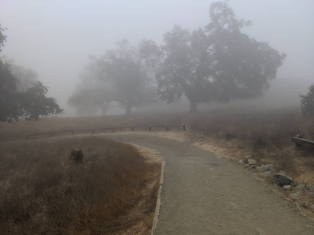 Rancho San Antonio morning hike