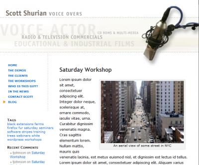 WordPress blog to match original site