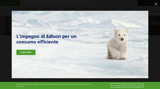 Suppliers Qualification Portal | Edison