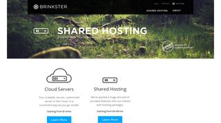 Brinkster offers Cloud Servers, Managed Hosting, Disaster ...