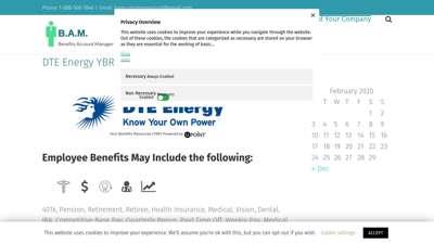DTE Energy YBR  Employee Benefits  Login Register Enroll