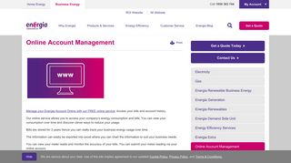 Manage your business account online | Energia - Energia