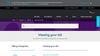 Support   Viewing Your Bill   eir.ie