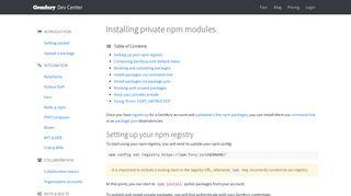 Installing private npm modules · Gemfury Dev Center