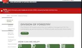 Tree City USA Annual Recertification
