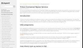 Triton Container Name Service - Documentation - Joyent