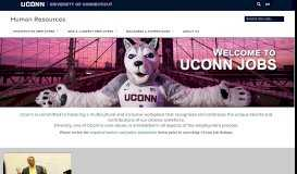 UConn Jobs   Department of Human Resources - UConn HR