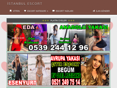 Nulled cms escort directory Premium PHP
