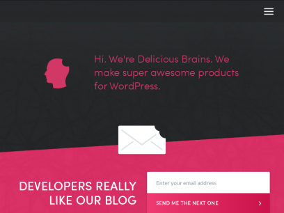 Delicious Brains Inc - Awesome products for WordPress developers