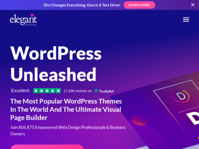 The Most Popular WordPress Themes In The World