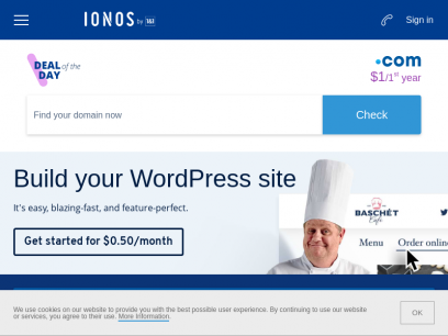 IONOS by 1&1 » Hosting Provider   Websites. Domains. Server.