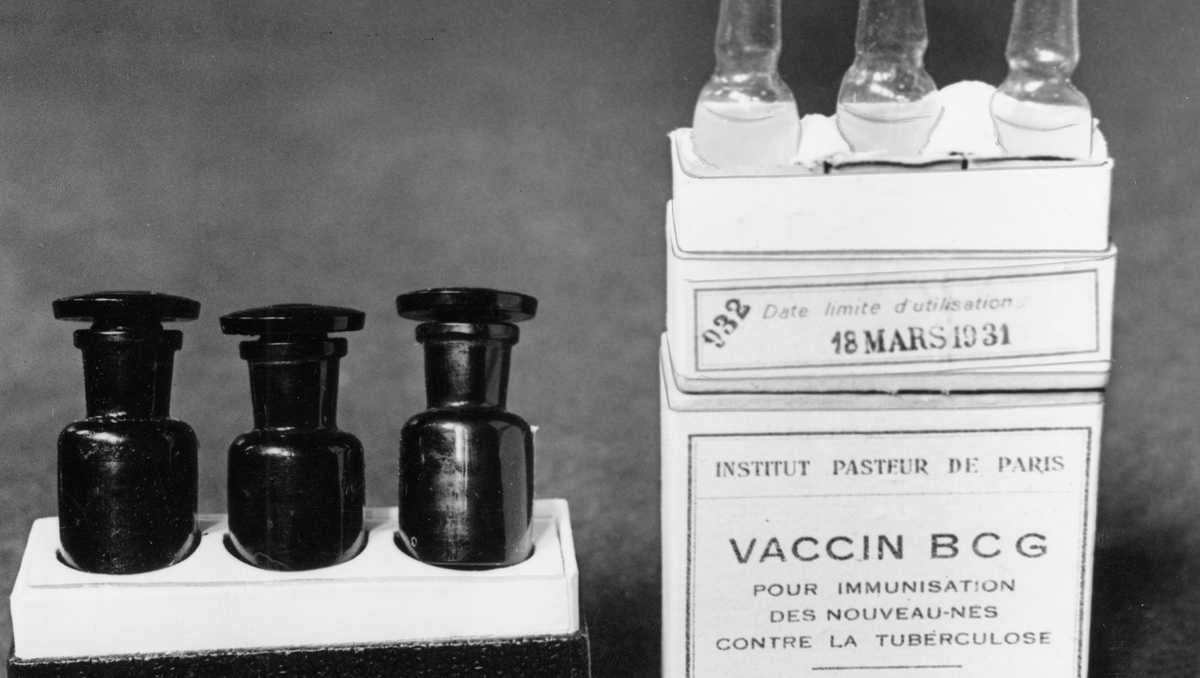 Could old vaccines for other germs protect against the coronavirus?