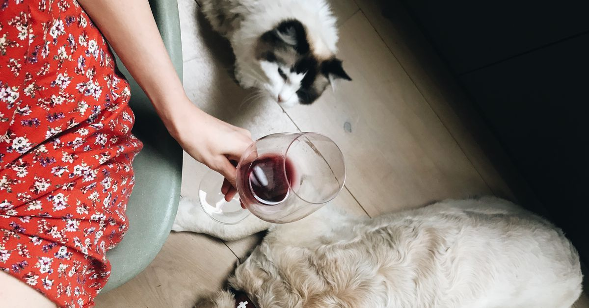 Beer, wine, and alcohol delivery surges because of coronavirus